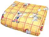 Vaikiška antklodė №36