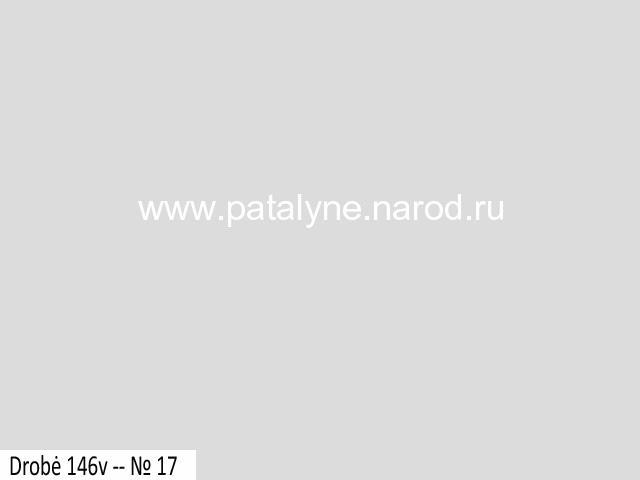 drobė 146v № 17